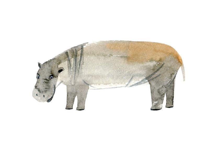 Hippopotamus Imagem do animal selvagem Ilustra??o tirada m?o da aquarela ilustração stock