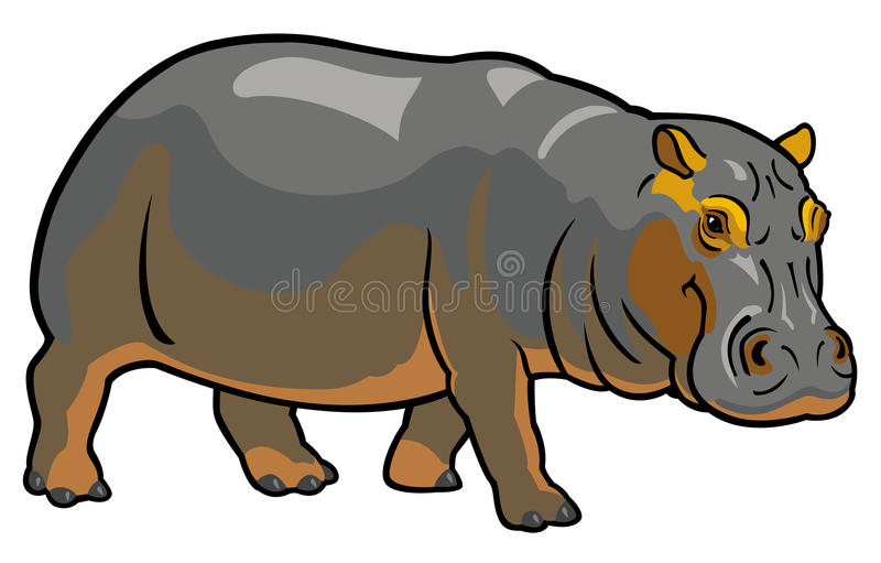 Hippopotamus on white royalty free illustration