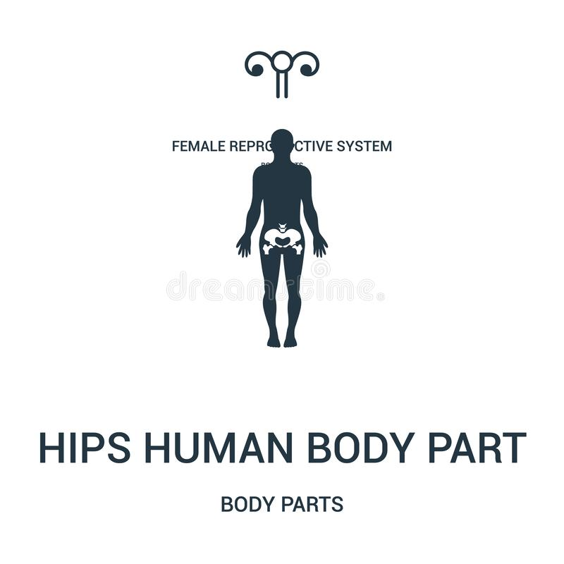 hips human body part icon vector from body parts collection. Thin line hips human body part outline icon vector illustration royalty free illustration