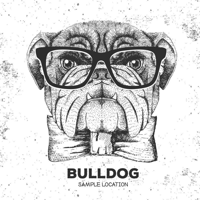 Hipster animal bulldog. Hand drawing Muzzle of animal dog. Hipster animal bulldog. Hand drawing Muzzle of animal stock illustration