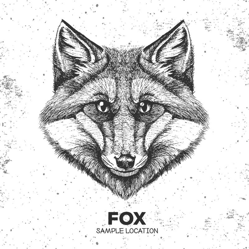Hipster animal fox. Hand drawing Muzzle of animal fox. Hipster animal fox. Hand drawing Muzzle of animal stock illustration