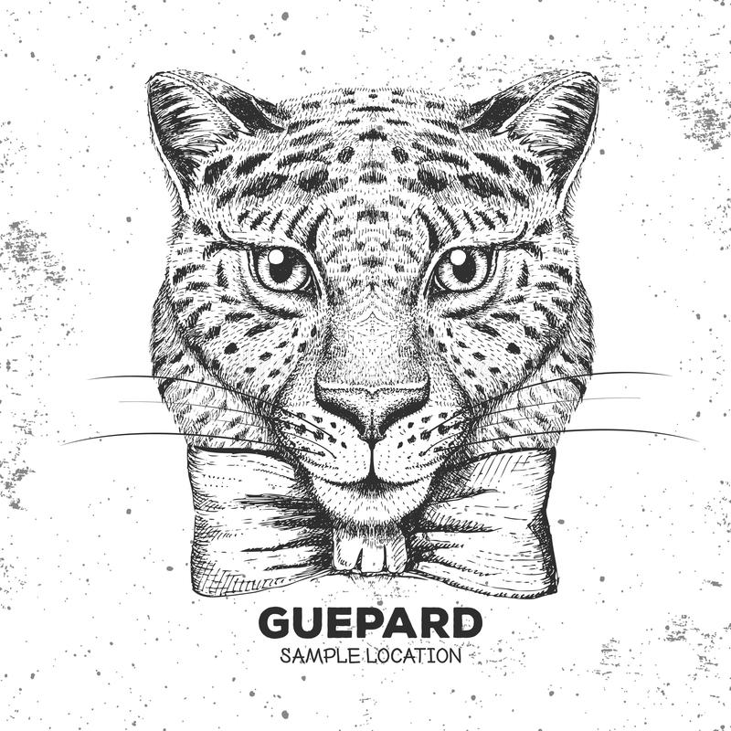 Hipster animal guepard. Hand drawing Muzzle of guepard. Hipster guepard. Hand drawing Muzzle of guepard vector illustration