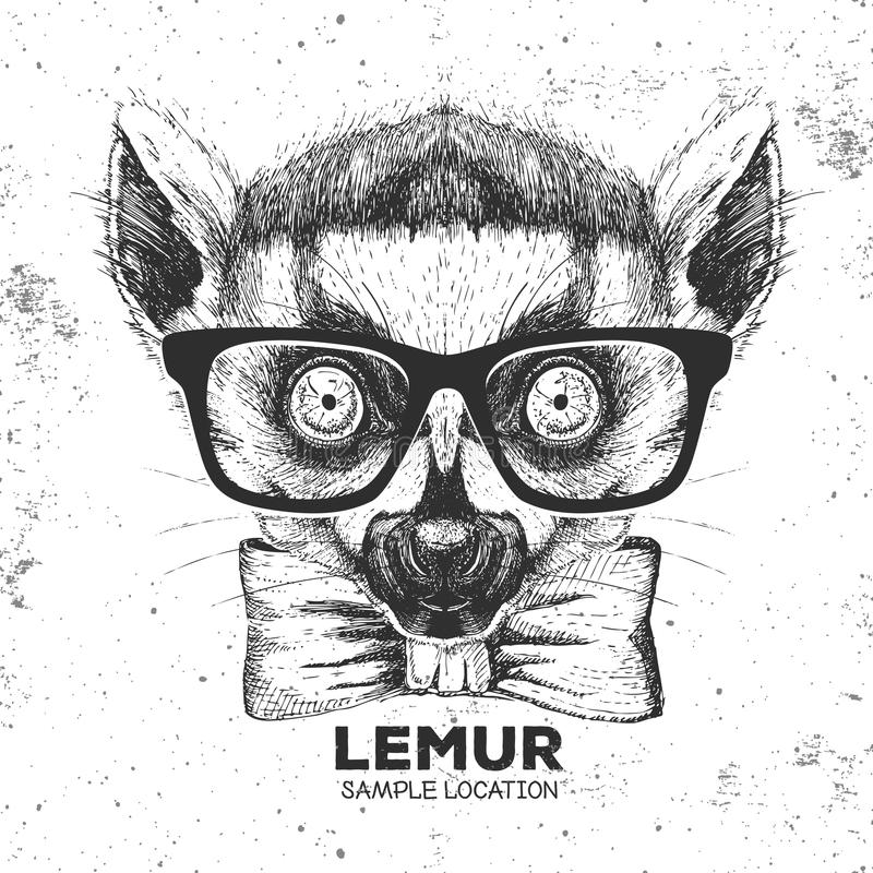 Hipster animal lemur. Hand drawing Muzzle of animal lemur. Hipster animal lemur. Hand drawing Muzzle of animal vector illustration