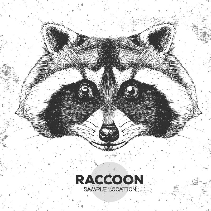 Hipster animal raccoon. Hand drawing Muzzle of animal raccoon. Hipster animal raccoon. Hand drawing Muzzle of animal stock illustration