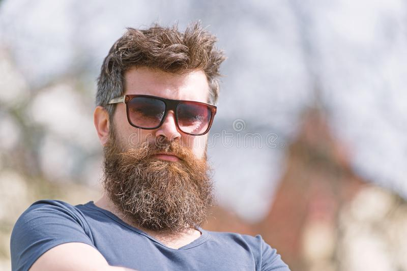 Hipster with beard and mustache on strict face, nature background, defocused. Bearded guy wears stylish sunglasses. Man. With beard looks stylish and confident stock image