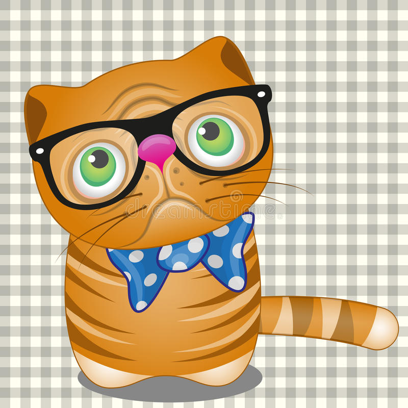 Hipster Cat On A Plaid Background