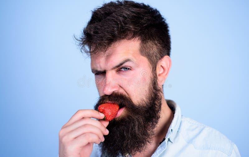 Hipster för stilig strikt framsida för man sexig med den långa skäggförsökjordgubben Gastronomiskt nöje Lustbegrepp muntligt arkivfoton