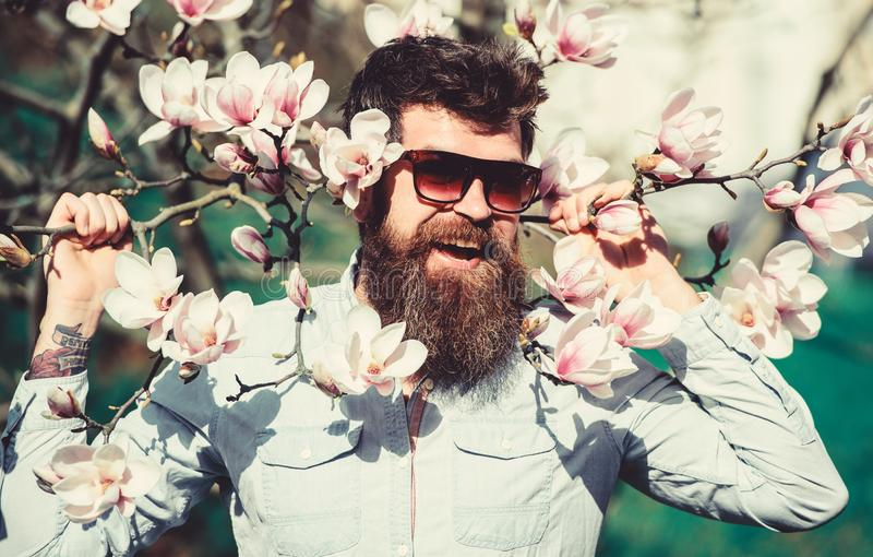 Hipster in fashionable sunglasses cheerfully posing with magnolia branches on background. Guy in modern stylish. Sunglasses. Fashion concept. Man with beard and stock photos