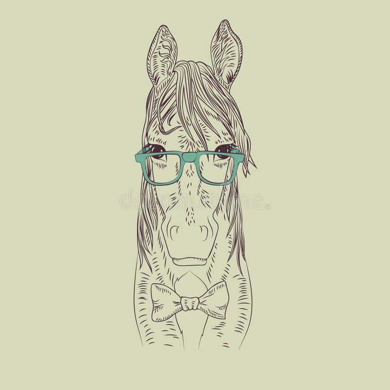 Hipster horse vector illustration. Graphic detailed brown pet stock illustration