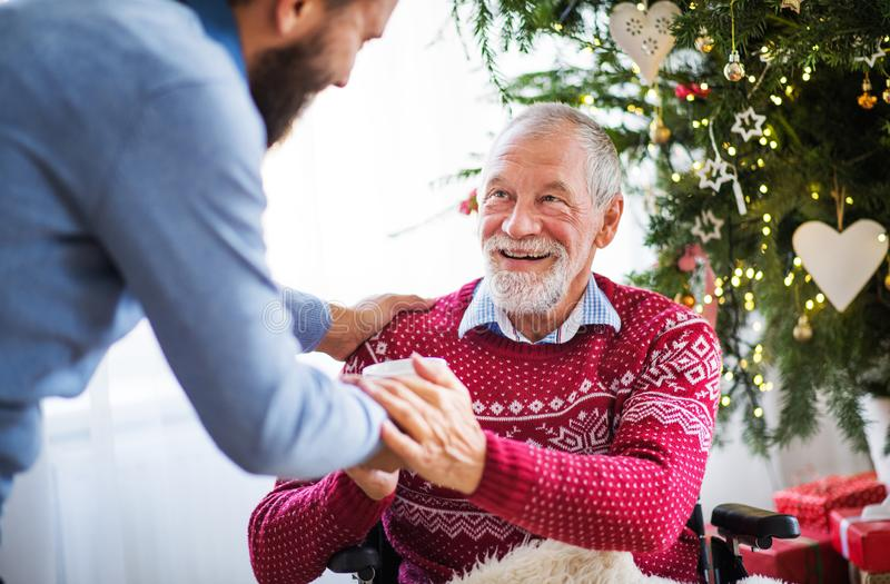 A hipster man giving drink to his senior father in wheelchair at Christmas time. stock photos