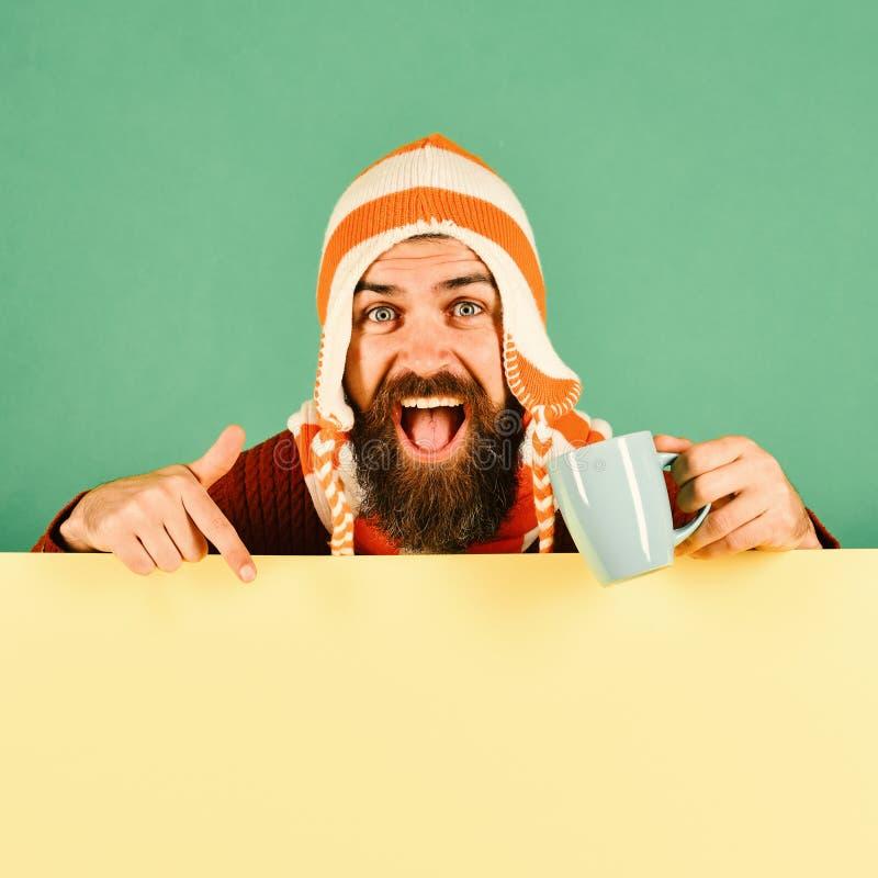 Hipster met baard en vrolijk gezicht Mens in warme hoed royalty-vrije stock fotografie