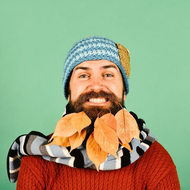 Hipster met vrolijk gezicht en baardhoogtepunt van de herfstbladeren stock afbeeldingen