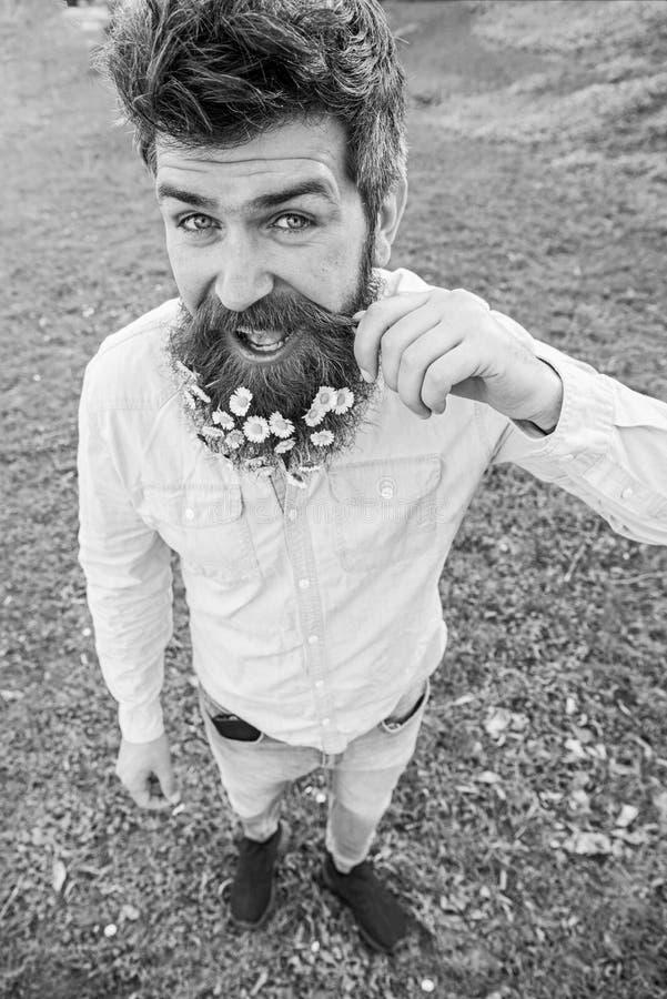 Hipster på lycklig framsidaställning på gräs som är defocused naturligt skönhetbegrepp Mannen med skägget och mustaschen tycker o royaltyfri foto