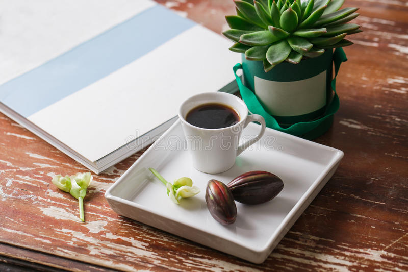 Hipster Pasen Vlak leg fotografie: kop van koffie, chocoladeei, oud tijdschrift, succulente cactus en uitstekend servet binnen stock afbeelding