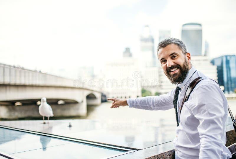 Hipsteraffärsmananseende vid floden i London som pekar på seagullen arkivbild