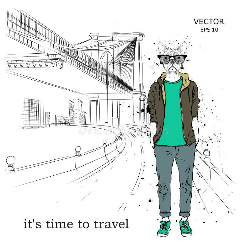 Hipsteren klädde hunden upp i omslag, flåsanden och tröja New York hand dragen vektorillustration vektor illustrationer