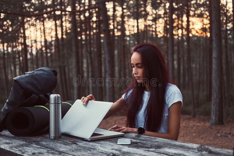 Hipsterflicka som öppnar en bärbar dator för att arbeta på en träbänk, medan ha ett avbrott i härlig höstskog royaltyfri fotografi