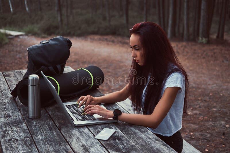 Hipsterflicka som arbetar på en bärbar dator på en träbänk, medan ha ett avbrott i härlig höstskog arkivbild