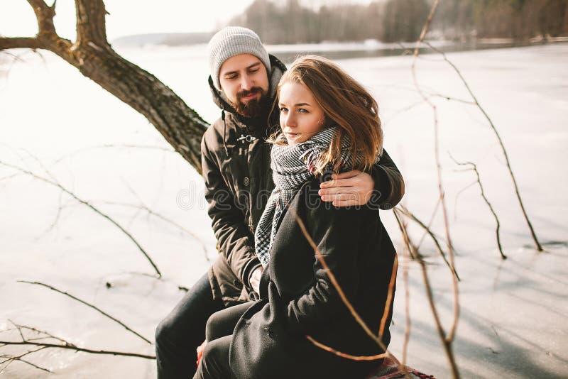 Hipsterparsammanträde på träd över den djupfrysta sjön royaltyfri fotografi