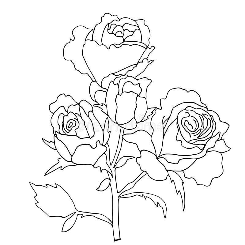 Hiqh kvalitet steg för att färga royaltyfri illustrationer