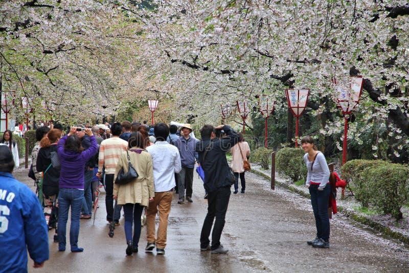 Hirosaki i Japan arkivbilder
