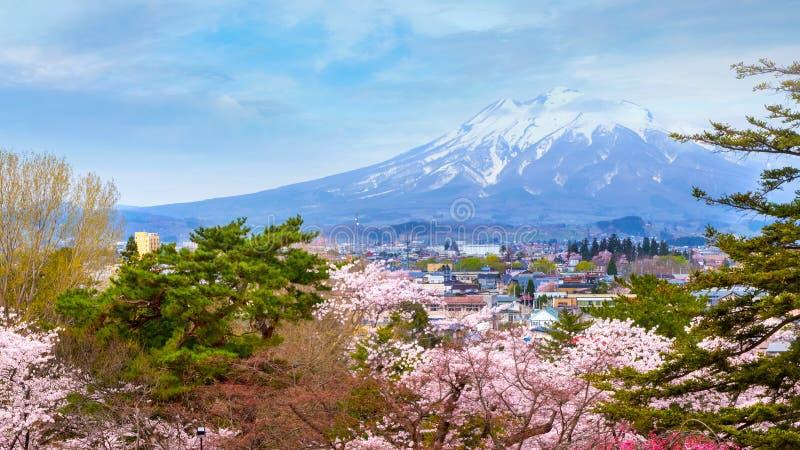 Mt. Iwaki with Full bloom Sakura - Cherry Blossom at Hirosaki park in Japan. Full bloom Sakura - Cherry Blossom at Hirosaki park, one of the most beautiful royalty free stock photography