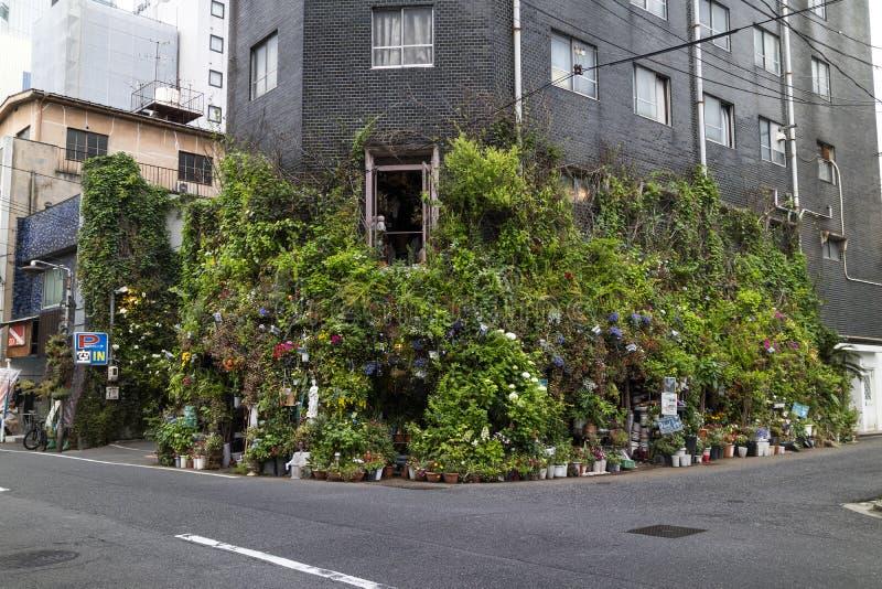 Hiroshima, Japão - 23 de maio de 2017: Ideia da rua de um canto de um s foto de stock