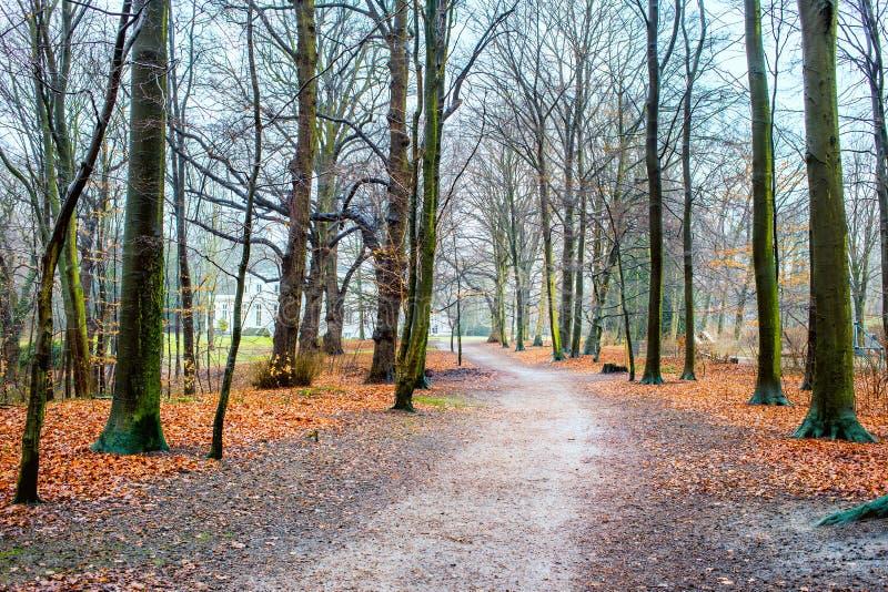 Hirschpark, Hamburg, Duitsland royalty-vrije stock foto's