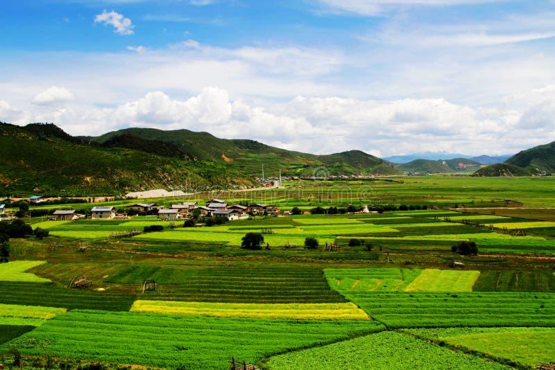 Hirtenlandschaft, Shangri-La Landschaft stockfotografie