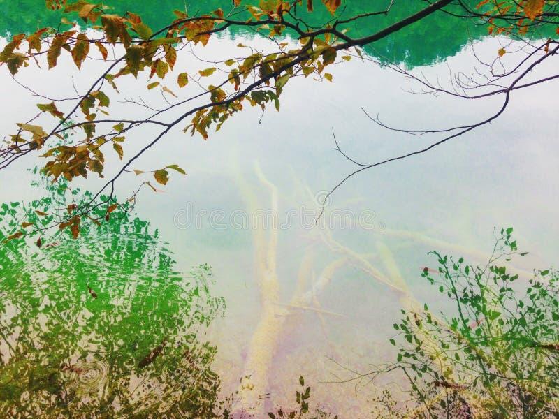 Hisnande plats av Plitvice sjön, nationalpark av Kroatien Listat på UNESCOvärldsarv royaltyfri fotografi