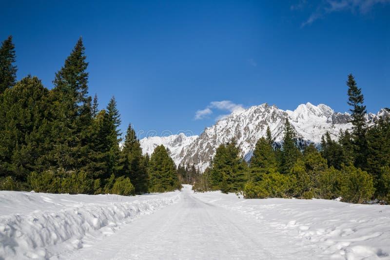 Hisnande sikt av snöig berg fotografering för bildbyråer