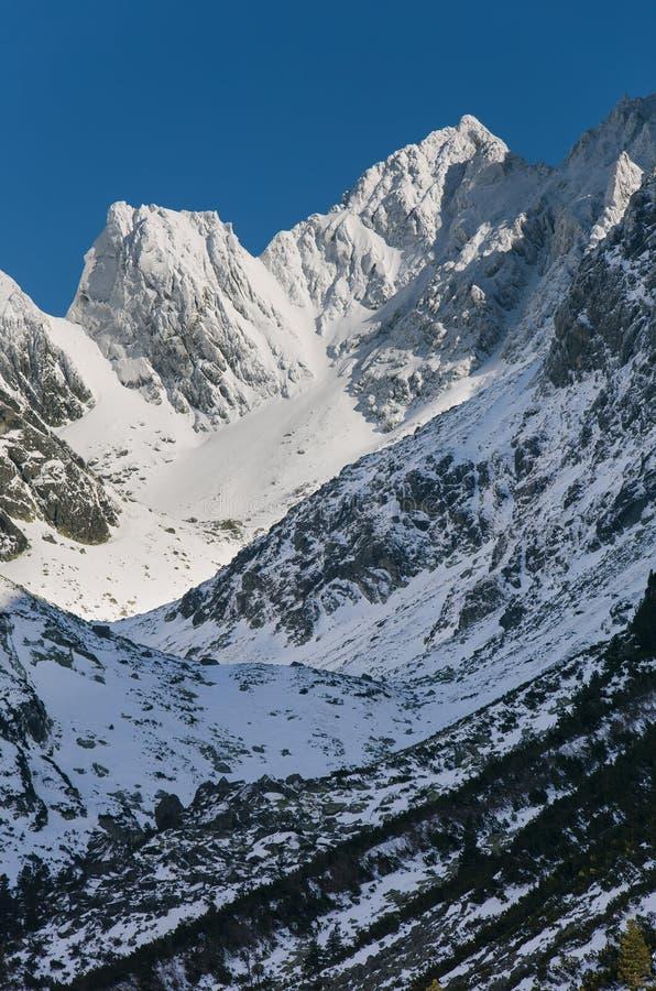 Hisnande sikt av snöig berg royaltyfri fotografi