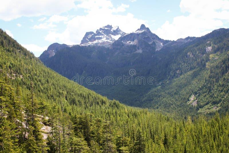 Hisnande sikt på Squamish, British Columbia royaltyfri foto