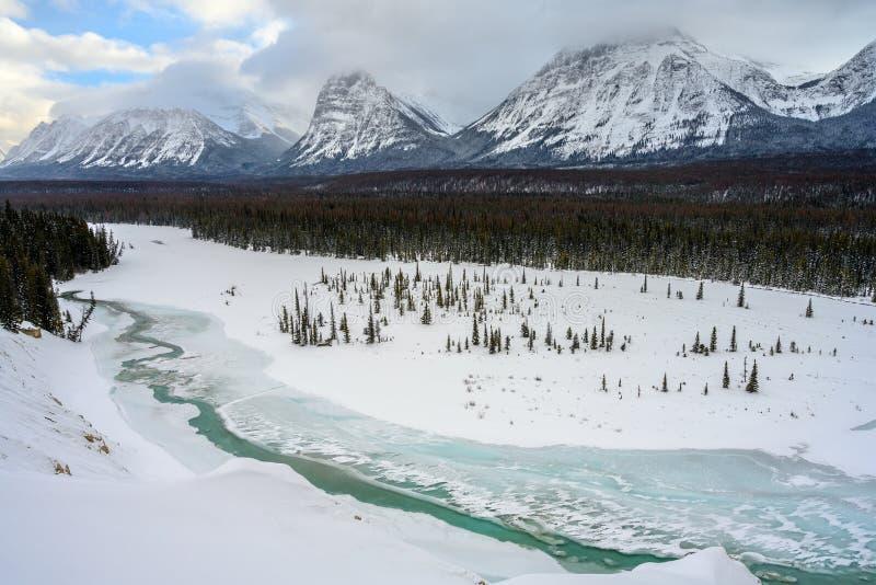 Hisnande vinterlandskap med den Athabasca floden i förgrunden och snöig berg i bakgrunden på Icefieldsen royaltyfri bild