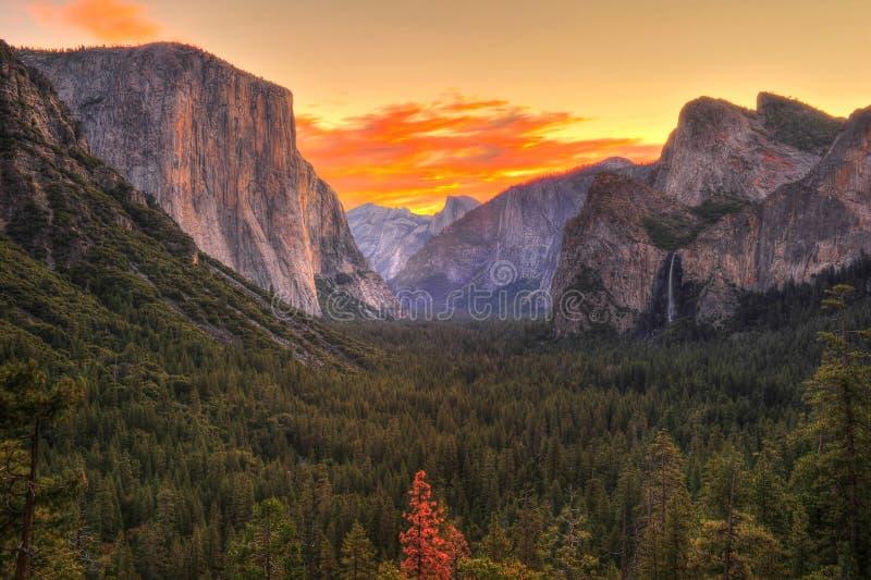 Hisnande Yosemite nationalpark på soluppgång/gryning, Kalifornien arkivbild