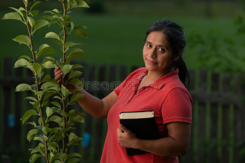 Hispanic Christian Woman Touching Pear Tree and Holding Bible. Hispanic Christian Woman Touching Pear Tree After Working in her Backyard and Having Spiritual royalty free stock photography