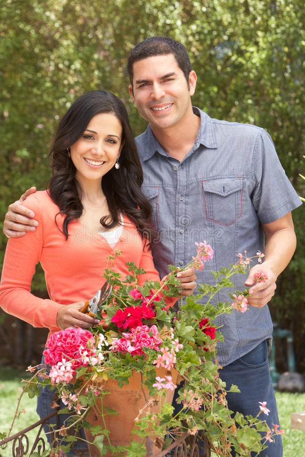 Hispanic Couple Working In Garden Tidying Pots royalty free stock photography