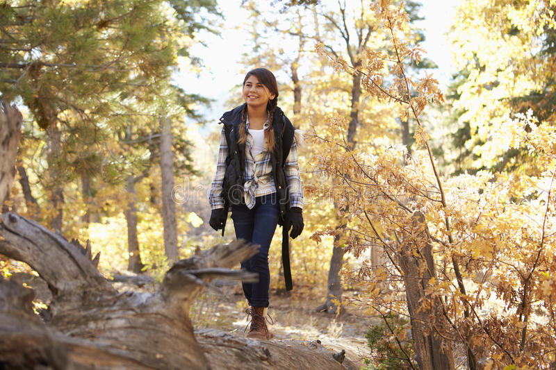 Hispanic girl walking along a fallen tree in a forest stock photo