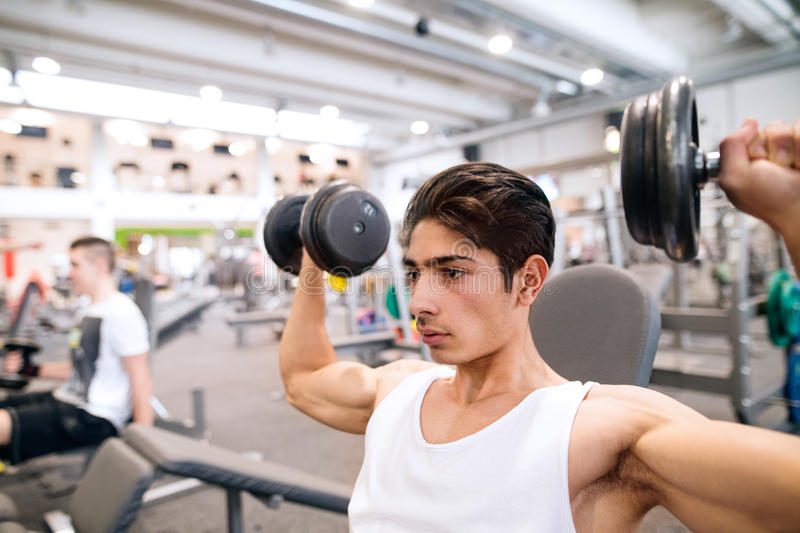 Hispanic man in gym on bench, working out with weights stock images
