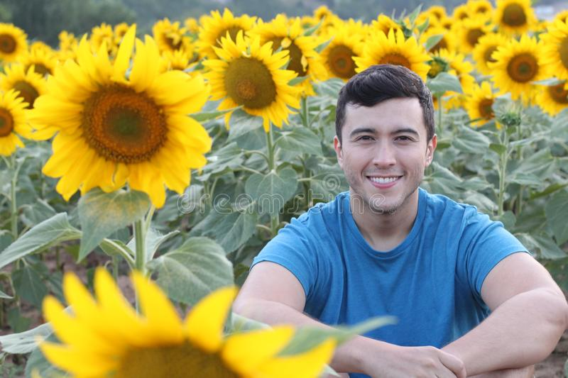 Hispanic man in in vibrant sunflower field stock photos