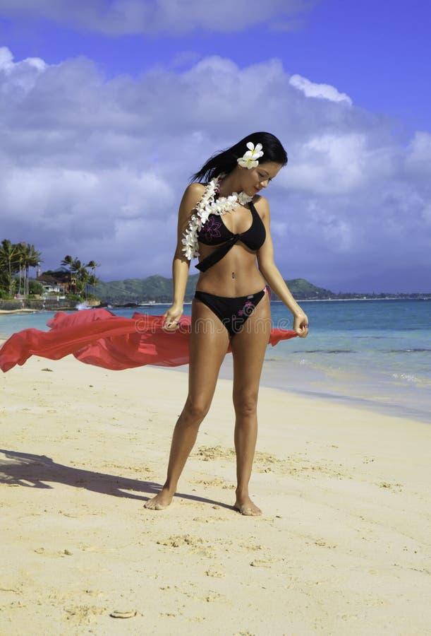 Hispanic woman in bikini at the beach royalty free stock images