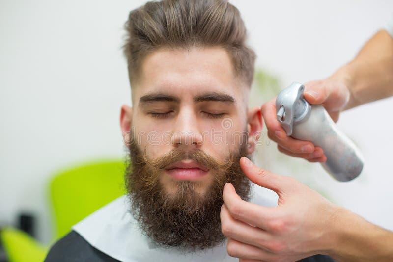 hisper人的完善的髭 图库摄影