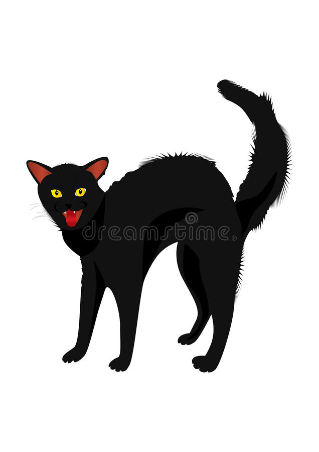 Download Hissing Cat Royalty Free Stock Photography - Image: 10207087