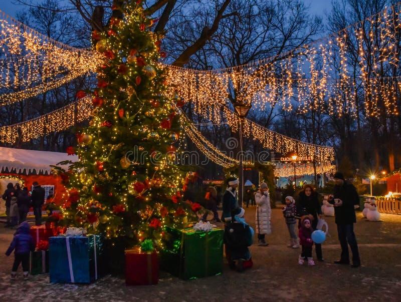 História do Natal imagens de stock royalty free