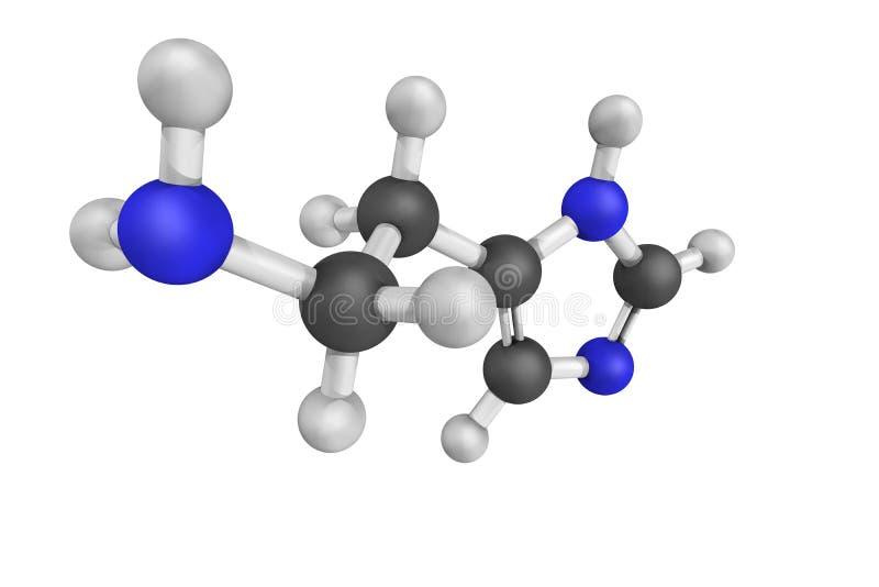 Histamine, betrokken bij lokale immune reacties evenals regulat stock afbeelding