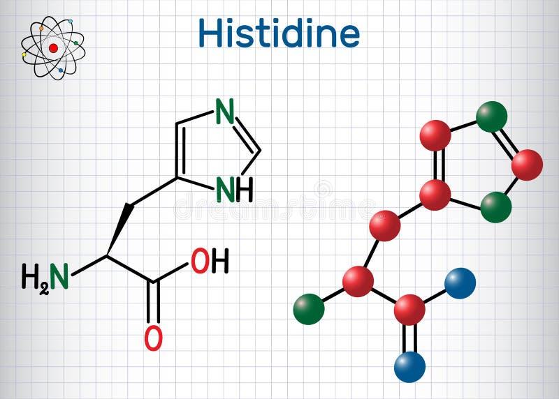 Histidine l histidine som är hans, H-aminosyramolekyl Det används i biosynthesisen av proteiner Ark av papper i en bur stock illustrationer