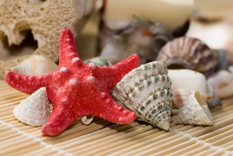 Histoires de mer. photos stock