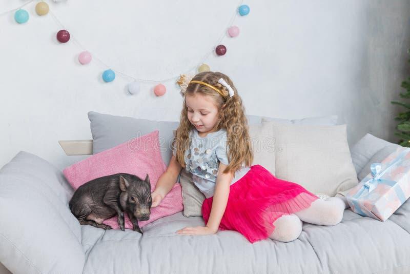 Historia del Año Nuevo y de la Navidad sobre una niña en ropa festiva y mini cerdo Poco símbolo del cerdo de 2019 negro foto de archivo libre de regalías