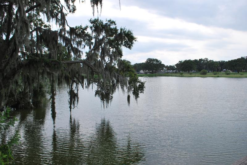 Patterson Park in Fort Meade Florida. Historic and beautiful Patterson Park in Fort Meade Florida stock image
