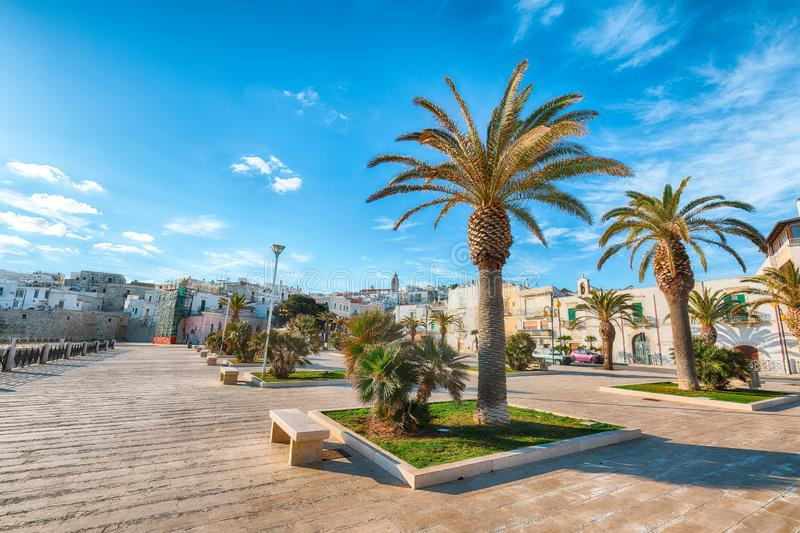 Historic central city of the beautiful town called Vieste royalty free stock image
